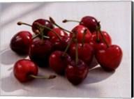 Morello Cherries II Fine-Art Print
