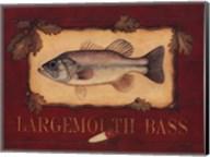 Bass Fine-Art Print