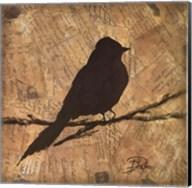 Bird Silhouette I Fine-Art Print