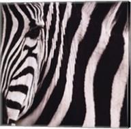 Camouflage I Fine-Art Print