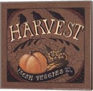 Harvest Fine-Art Print