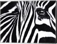 Black and White II Fine-Art Print