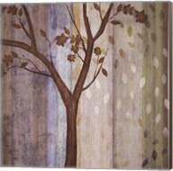 Changing Seasons II Fine-Art Print