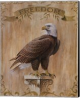 Eagle Freedom Fine-Art Print
