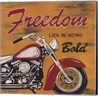 Freedom Fine-Art Print