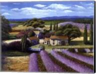 Lavender Fields Fine-Art Print