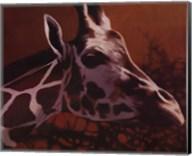 Giraffe Grande Fine-Art Print