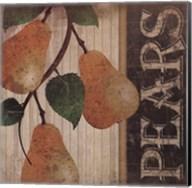Pears Fine-Art Print