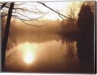 Fog on Shelly Lake II Fine-Art Print
