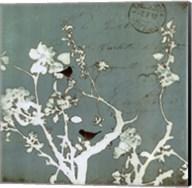 Song Birds IV - mini Fine-Art Print