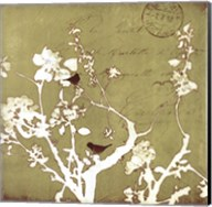 Song Birds II Fine-Art Print