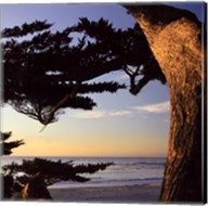 Carmel Sunset II Fine-Art Print