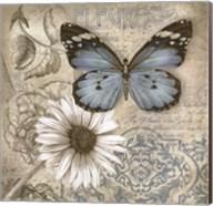 Butterfly Garden II Fine-Art Print