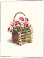 Log Cabin Pansy Basket Fine-Art Print
