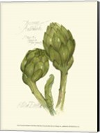 Tuscany Artichoke Fine-Art Print