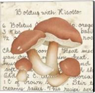 Boletus Fine-Art Print
