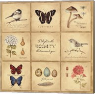 Beauty 9 Patch Fine-Art Print