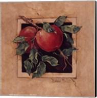 Apple Square Fine-Art Print