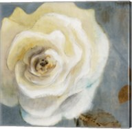 Late Summer Roses detail Fine-Art Print
