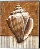 Vintage Shell II - mini Fine-Art Print