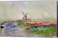 Tulip Field in Holland Fine-Art Print