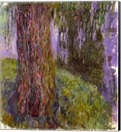 Weeping Willow and the Waterlily Pond Fine-Art Print