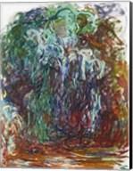 Weeping Willow Fine-Art Print