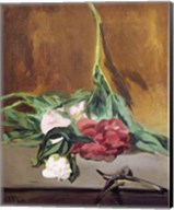 Stem of Peonies and Secateurs, c.1864 Fine-Art Print