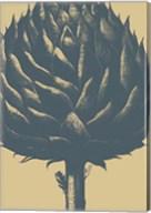 Artichoke 1 Fine-Art Print