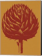 Artichoke 15 Fine-Art Print