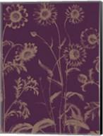 Chrysanthemum 13 Fine-Art Print