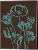 Tulip 6 Fine-Art Print