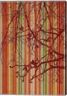 Amber Stripe Fine-Art Print