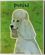 Poodle (grey) Fine-Art Print