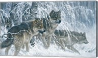 Edge of Winter (detail) Fine-Art Print