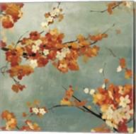 Orange Blossoms II Fine-Art Print
