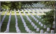 Arlington National Cemetery Arlington Virginia USA Fine-Art Print
