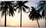 Silhouette of palm trees on a beach during sunrise, Nha Trang Beach, Nha Trang, Vietnam Fine-Art Print