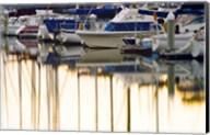 USA, California, Santa Barbara, boats in marina at sunrise Fine-Art Print