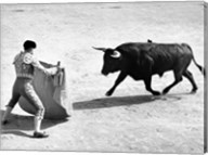 High angle view of a bullfighter with a bull in a bullring, Madrid, Spain Fine-Art Print