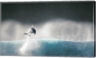 Dolphin breaching in the sea Fine-Art Print