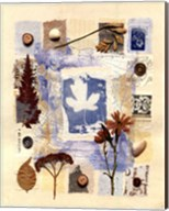 Summer Diary Fine-Art Print