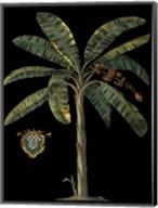 Palm & Crest on Black II Fine-Art Print