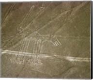 Nazca Lines Dog Fine-Art Print
