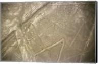 Nazca Lines Symbol Fine-Art Print