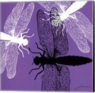 Pop Fly V Fine-Art Print