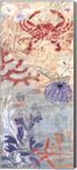 Floral Frenzy Coastal VI Fine-Art Print