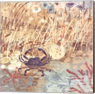 Floral Frenzy Coastal I Fine-Art Print