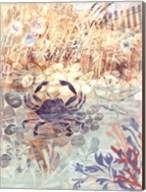 Floral Frenzy Coastal III Fine-Art Print