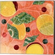 Citrus Limon I (SM.) Fine-Art Print